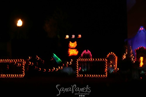 Halloween Light Display