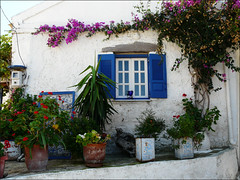 Greek House (duqueros) Tags: plants house window island europa europe dorf village fenster pflanzen hellas haus insel greece corfu korfu kerkyra griechenland greekhouse ionischeinsel southeasteurope ionianisland abigfave  sdosteuropa  duqueiros