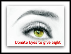 A Recipient Is Not Told Who Donated The Eye Gift Of Sight Made Anonymously Following Steps Will Aid Noble Cause