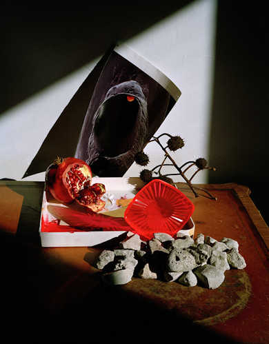 Untitled (Pomegranate Photogram)