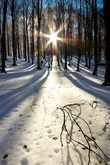 Farsi Largo ( Graziano Rinna ) Tags: neve sole freddo abruzzo forca caldo 1020sigma abigfave dacero bellitalia grazianorinna
