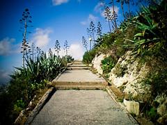 (marcos rv) Tags: scale grecia atenas monte 2008 dicembre diciembre escaleras licabeto ticatica