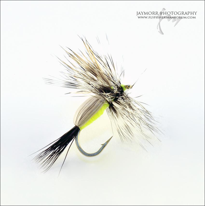 JAY-0032-32
