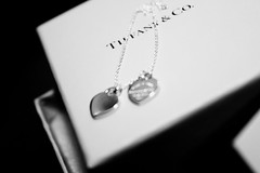 Tiffany & C.O. designer necklace & box (share your widsom) Tags: blackandwhite food silver necklace berries spoon jewelry bowl delicious card precious enjoy icecream snack expensive bliss tiffanyco tiffanys deisgner