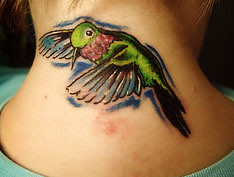 birdy cover up (Billy Whaley Tattoo) Tags: woman color bird girl tattoo neck flying billy coverup whaley huming