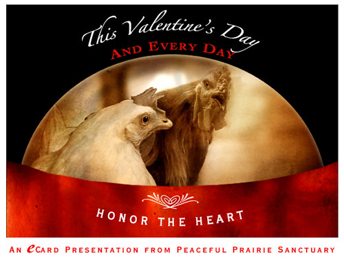 Peaceful Prairie 2010 V-Day Vegan eCard