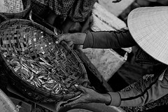 woman weighing fish (imagesbyjillian) Tags: street people blackandwhite tourism water monochrome hat horizontal river landscape town site clothing ancient asia village basket waterfront dress traditional tourist vietnam hoian sight hanoi oneperson conical worldheritage indochina oldquarter singleperson conicalhat