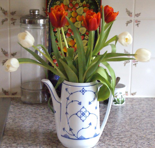 tulips on the kitchen counter