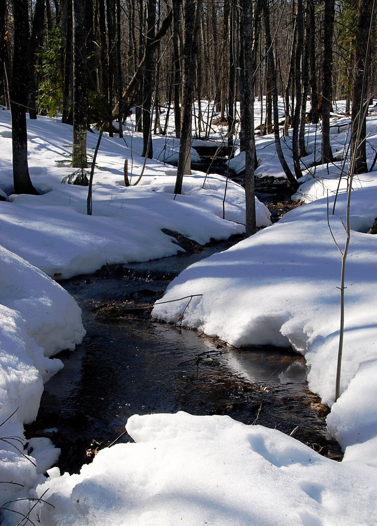 A seasonal spring surrounded by snowy banks.