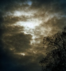 Sun of mud (Stefano Sala) Tags: light cloud sun clouds dark mud branches solo nightmare luce rami nubi incubo