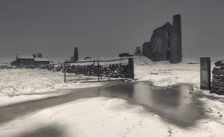 Cold Abandon