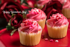 Happy Valentines Day (Bob.Hurley - bobhurleyphoto.com) Tags: love valentines day cupcake cake valentinesday food onelightsetup roses flowers red pink dof bokeh