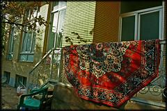 Home (seyed mostafa zamani) Tags: life autumn light sunset shadow color art home beautiful canon carpet design nice kiss iran sweet culture dreams civilization iranian dear   islamic                450d