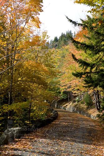 New-England-Cruise_Oct192009_0112web