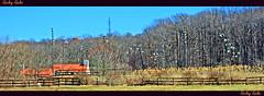 Watchung Stables March 2009 (Ricky rake) Tags: blue sky panorama orange brown tree nature fence nj soe unioncounty blueribbonwinner watchungreservation flickrdiamond eliteimages betterthangood theperfectphotographer goldstaraward distinguishedpictures rubyphotographer