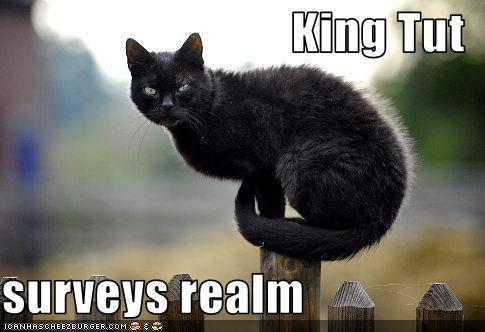 King Tut realm