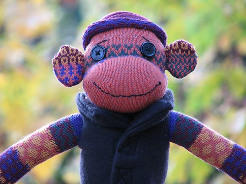 Pumpkin Patch Color Sock Monkey