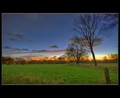 Mr. Tienpond's Early Rising (<~~iVo~~>) Tags: autumn tree field grass clouds sunrise landscape countryside vista hdr mechelen goldenhour landschap tonemapping ivoverbruggen2009