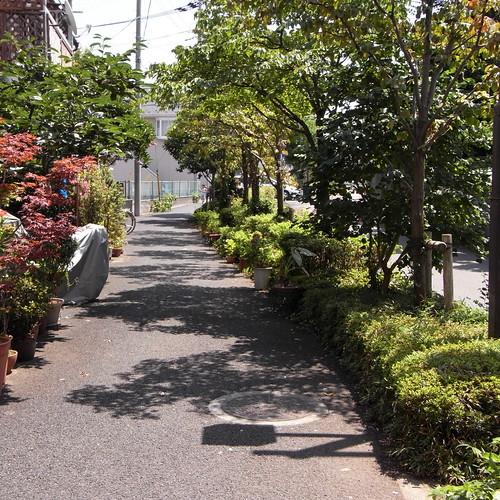 Chohjiro_bridge 03