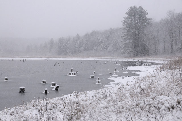 First Real Snow of 2009 at Nevins Pond