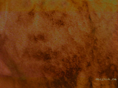 "Sin vuelta atrás ...     No turning back .. (tan.solo_milenia .) Tags: soe texturas abigfave platinumphoto anawesomeshot infinestyle portraitsofyourlove theperfectphotographer psychoint flickrestrellas portraitworld kunstplatzlinternational vosplusbellesphotos beyondclick newenvyofflickr artofimages crazygeniuses ""exoticimage"" trabajarconphotosop manipulaciónartistica agoníaeterna visionqualitygroup…"