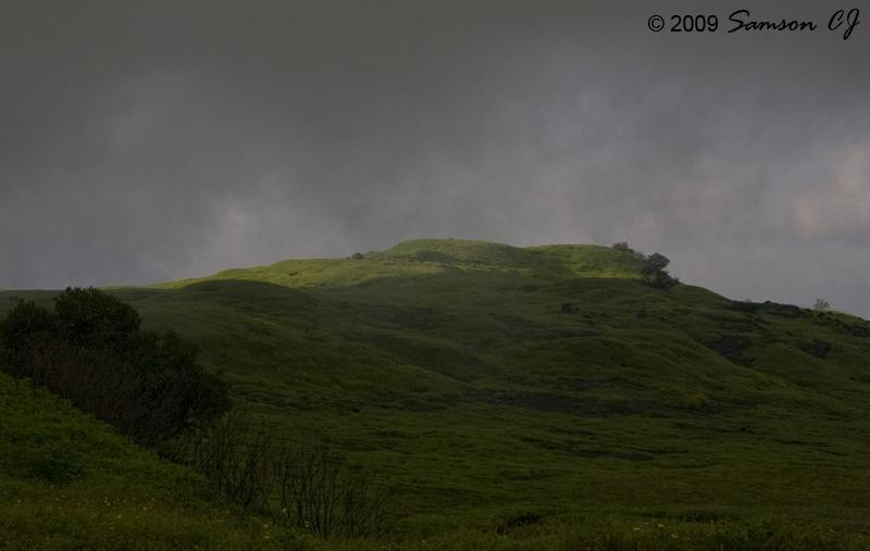 Hcgad_grassland_blog