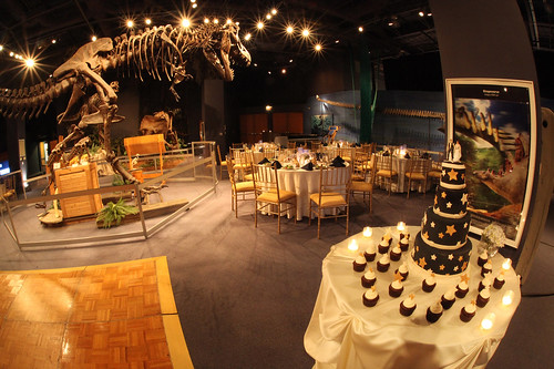 Cake Table & T-Rex