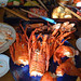 Our Osechi