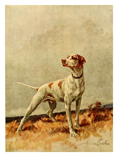 012-Pointer-The power of the dog 1910- Maud Earl