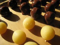 IMG_0173 (Brillist Design) Tags: almond chocolates marzipan cardamom