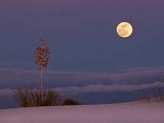Moon Rise over Alamogordo, NM (jimf_29605) Tags: moonrise newmexico alamogordo whitesandsnationalmonument olympus e510 zuiko 50200mm zd wow