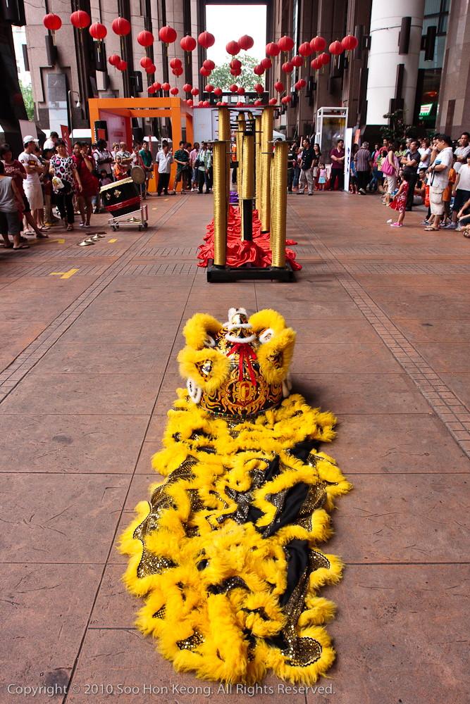 """Lion"" Resting @ Berjaya Times Square, KL, Malaysia"