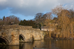 Bakewell Bridge (Blade Man) Tags: bridge tree stone river derwent derbyshire peakdistrict bakewell