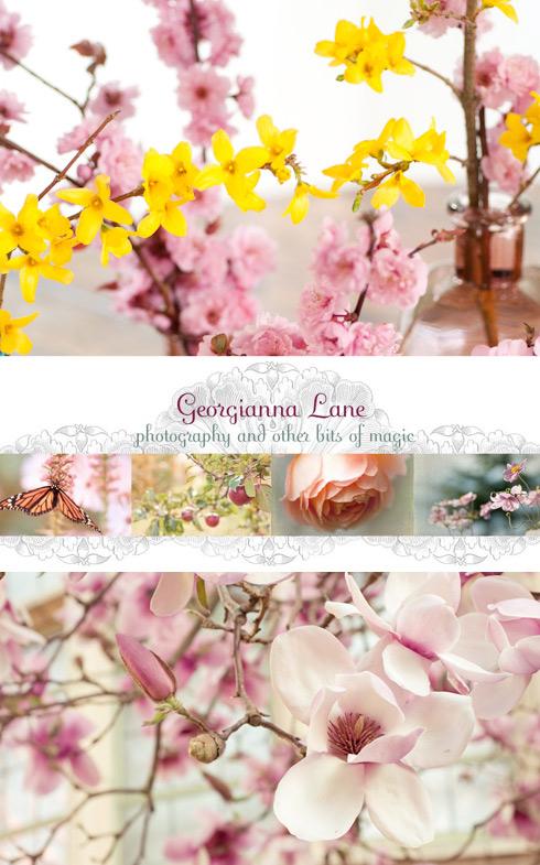 Lovely blogs: Georgianna Lane