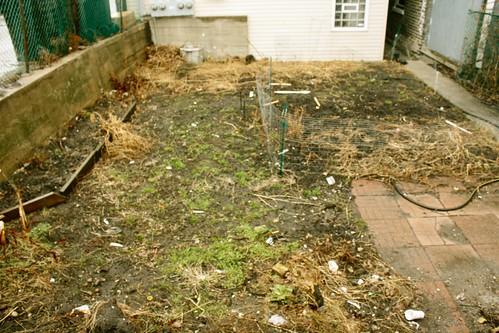 ugly yard