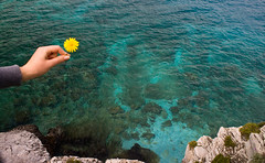 Mani 6 : Sun again! (eliaslar) Tags: blue sea flower hand mani greece cave  diros  lakonia vlychada