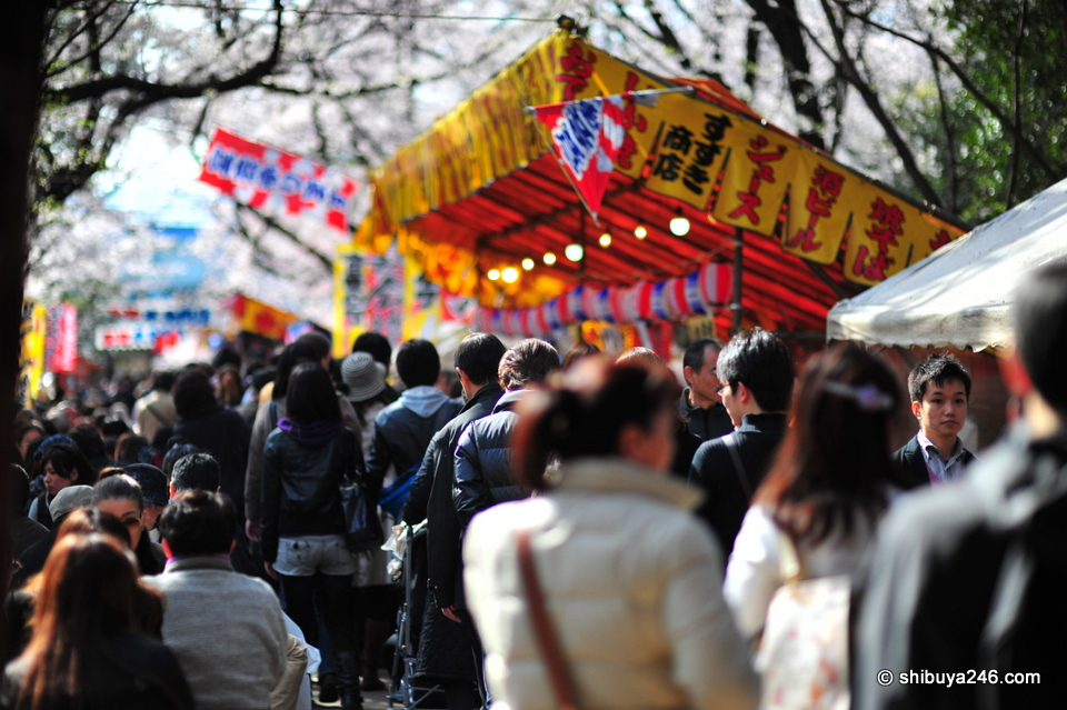 A very busy scene with people buying food at the various stalls on the way to Toshogu Shrine.