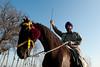Tough Guys (gurbir singh brar) Tags: horse india nikon farmer turban sikh punjab nikkor rider horseback punjabi traditionaldress spear armed manandhorse reins nikond700 gurbirsinghbrar zorasingh jorasingh