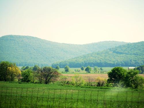 Jones Valley
