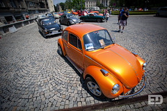 """Belgrade Bugs • <a style=""""font-size:0.8em;"""" href=""""http://www.flickr.com/photos/54523206@N03/5745972708/"""" target=""""_blank"""">View on Flickr</a>"""