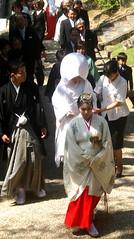 Nara wedding (bokage) Tags: wedding japan temple persona bride ceremony procession miko nara shinto