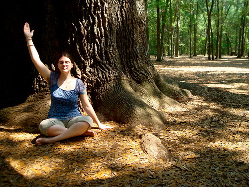 Meditation under the Angel Oak by alisonleighlilly, on Flickr