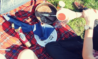 picnic at Djurgården