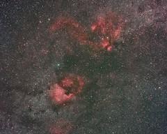 North America Nebula (musubk) Tags: sky stars nebula astrophotography astronomy northamericanebula ngc7000 Astrometrydotnet:status=solved Astrometrydotnet:version=14400 Astrometrydotnet:id=alpha20110616600180