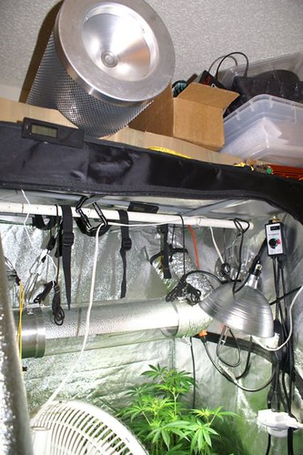 ... the 6  fan in a box to reduce noise and is pulling air thru the cooltube vie the top vent sleeve w/ 6  ducting. Do the same thing and youu0027re all set. & Ventilation questions regarding 600 watt grow tent - Page 2 ...