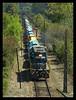 """Panelero"" (Fepasas en la Araucania) Tags: tren fepasa homersiliad panelero travelsofhomerodyssey"