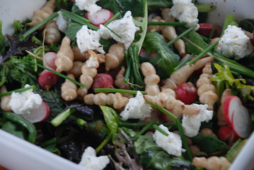 salad with radishes, crosnes, Patches of Star chevre and Rooftop Farms lettuces