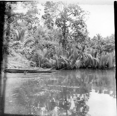 Praus on the bank of a stream at Dago Bay