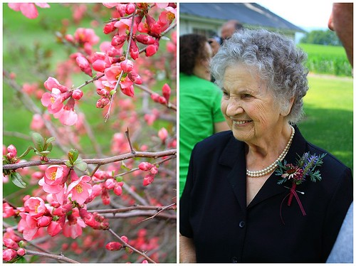 Quince flowers and My Grandmother