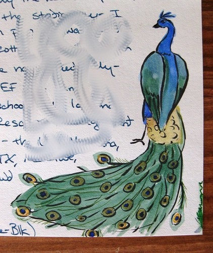 Hand-painted peacock